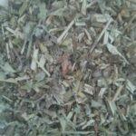 chopped catnip herb
